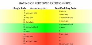 Borgskalan & den modifierade RPE