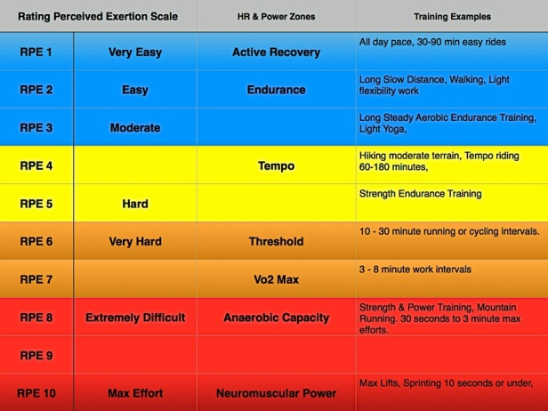 Image result for adapted borg scale